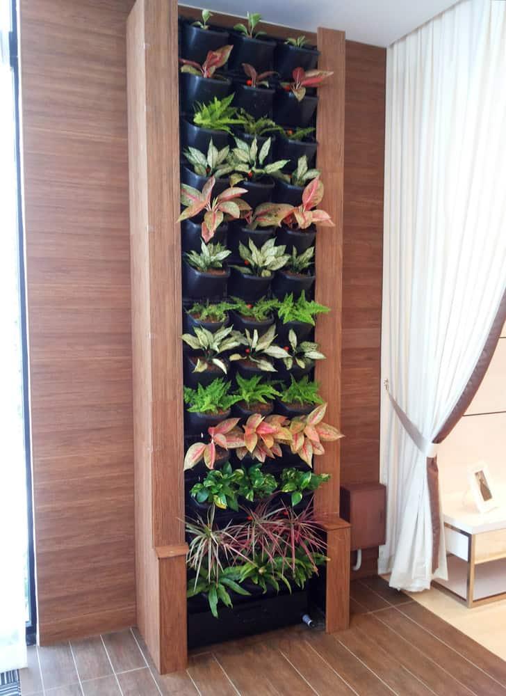 Johor Bahru House indoor Green Wall