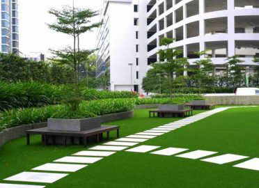 royal grass malaysia public park