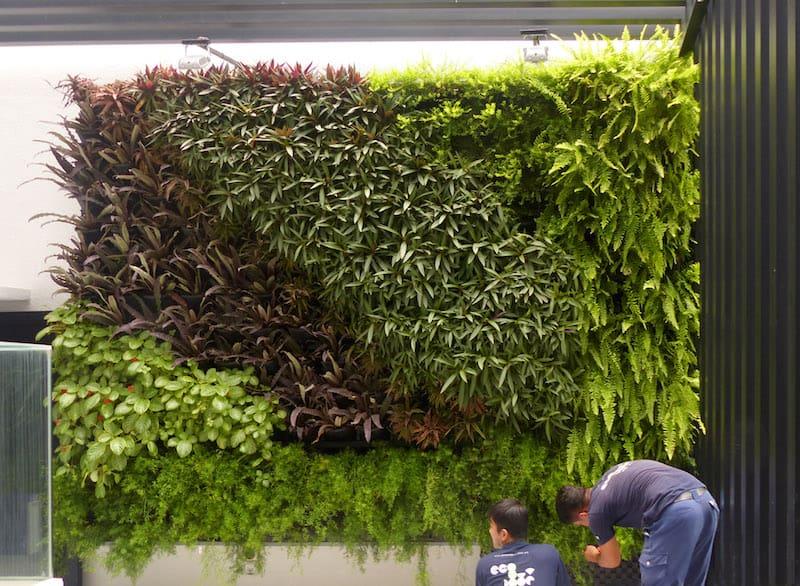 Building A Vertical Garden Wall