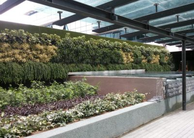 Riverson Hospital Green Wall