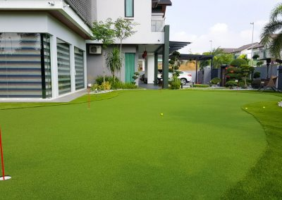 Residential Artificial Grass Golf Putting