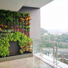 Vertical Garden On Residential Balcony