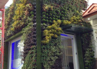 Vertical Garden with beautiful plants in Malaysia